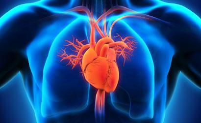 Cardiovascular Stock