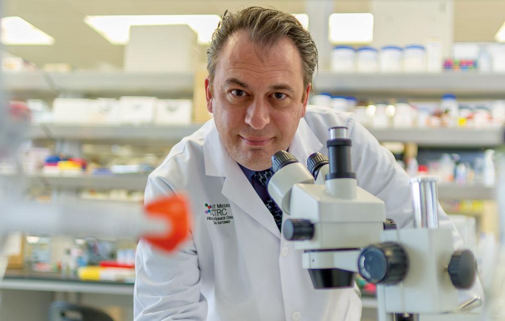 Andrew Brenner, M.D., Ph.D.