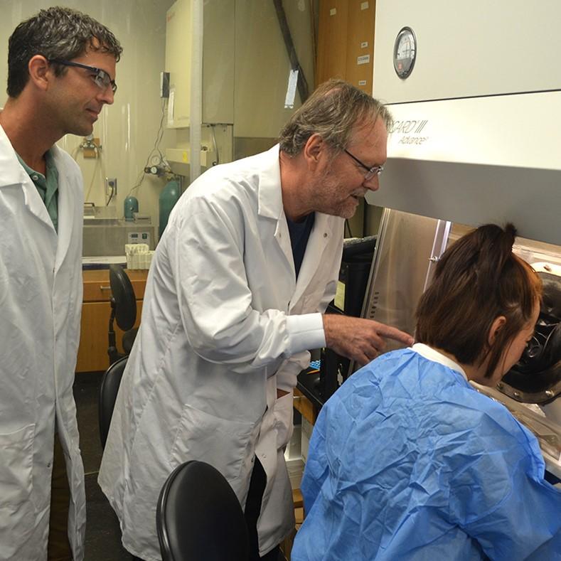 Matthew Wanat, PhD; James Lechleiter, PhD; and Idaira Oliva, PhD