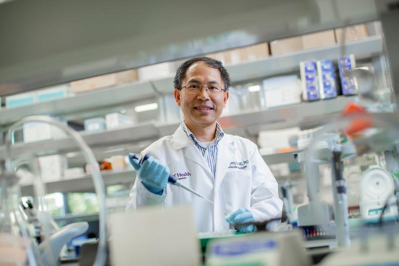 Mingjiang Xu, MD, PhD