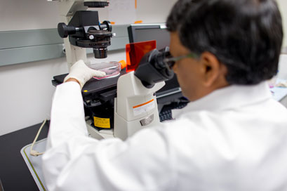 A. Pratap Kumar, Ph.D.