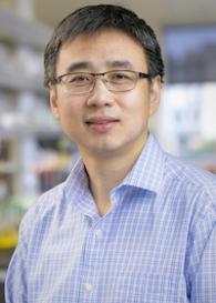 Yan Xiang