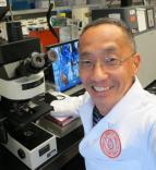 Yuji Ikeno M.D., Ph.D.
