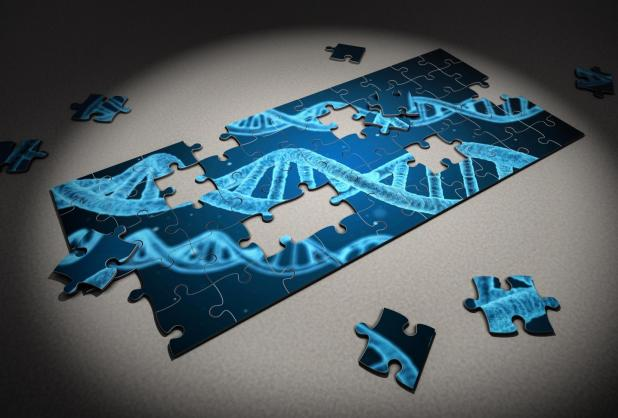 Bioinformatics puzzle