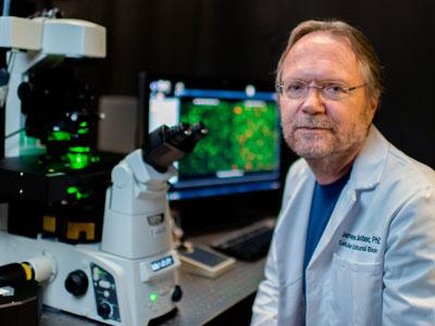 Dr. James Lechleiter professor cellular structural biology UT Health Science Center San Antonio