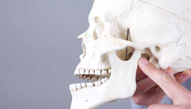 Doctor indicating location of jaw joint treatment on model skull. Bruxism can cause TMD or TMJ.