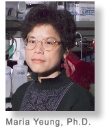 Dr. Maria Yeung was a faculty member of the Developmental Dentistry department at UT Health Science Center San Antonio